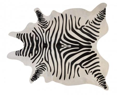 Stencil_Zebra.jpg